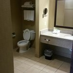 Foto de Holiday Inn Express Hotel & Suites Opelika Auburn