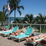 The Westin Beach Resort & Spa, Fort Lauderdale resmi