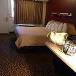 Foto de Red Roof Inn Detroit Troy