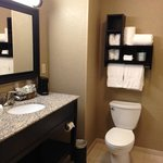 Hampton Inn & Suites Saginaw照片