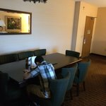 Φωτογραφία: Embassy Suites Orlando - Lake Buena Vista South