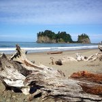 Foto de Quileute Oceanside Resort