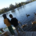 Foto de Moose Lake Lodge, LLC