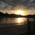 sunrise, waiting for the ferry to hollywood studios