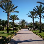 Φωτογραφία: Hotel Riu Palace Royal Garden