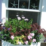 Beautiful flower boxes on the front porch!