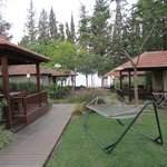 Foto di Golan Rooms At Sagi Family Country Lodging