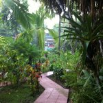 Pathway to our bungalow
