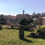 One of the multiple views in the Roman Forum