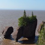 Hopewell Rocks Tide UP