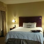 Hampton Inn & Suites Omaha Southwest - La Vista resmi
