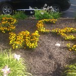Garden Art - BWCS - BEST WESTERN Country Suites