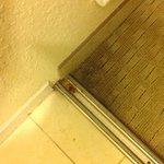 Homewood Suites by Hilton Tampa-Port Richeyの写真