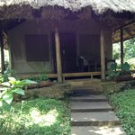 Foto de Sanctuary Gorilla Forest Camp