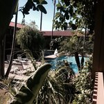 BEST WESTERN PLUS Pepper Tree Inn Foto