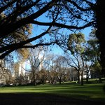 Beautiful Flagstaff Gardens across the street