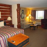 Φωτογραφία: Stoney Creek Hotel & Conference Center - La Crosse