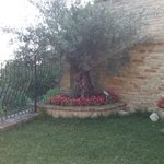 Photo of B&B San Nicolo