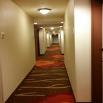 Bilde fra Hilton Garden Inn - Salt Lake City Airport