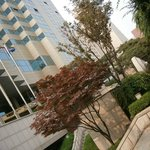 Photo of Novotel Ambassador Gangnam Seoul