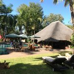Foto van Sefapane Lodge and Safaris
