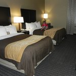 Foto van Comfort Inn Lebanon Valley/Ft. Indiantown Gap