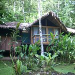 Foto van Pacuare Lodge