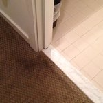 Dirty carpet in guest room