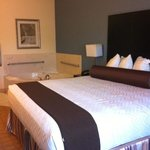 Foto de BEST WESTERN PLUS Lytle Inn & Suites