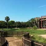 Bilde fra Disney's Animal Kingdom Lodge