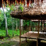 Muyuna Amazon Lodge resmi