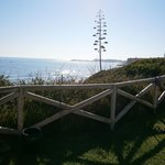 Photo of Hipotels Hotel Flamenco Conil