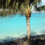 Foto van Sanctuary Rarotonga-on the beach