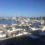 Photo de Newport Harbor Hotel & Marina