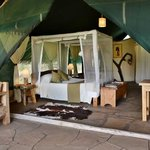 Photo de Kibo Safari Camp