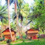 Foto Island Vinnies Tropical Beach Cabana