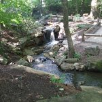 Waterfall feature on the trail