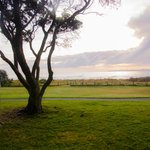 Foto de Orewa Beach Top 10 Holiday Park