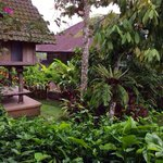 Bali Mountain Retreat Foto