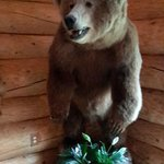 Foto di Alaska's Wasilla Bed and Breakfast