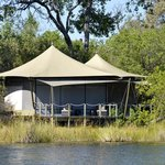 Bilde fra Wilderness Safaris DumaTau Camp