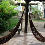 hammocks on your doorstep