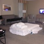 Φωτογραφία: Holiday Inn San Antonio International Airport