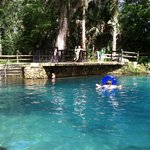 Zdjęcie Juniper Springs Recreation Area