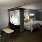 SpringHill Suites Philadelphia Valley Forge/King of Prussia resmi