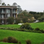 Foto Balgownie Estate Vineyard Resort & Spa