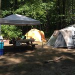 Foto de Recompence Shore Campground at Wolfe's Neck Farm