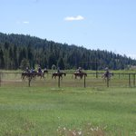 Foto van Turpin Meadow Ranch