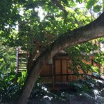 Foto van Bamboo Inn on Hana Bay