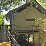 Foto de Tubu Tree Camp